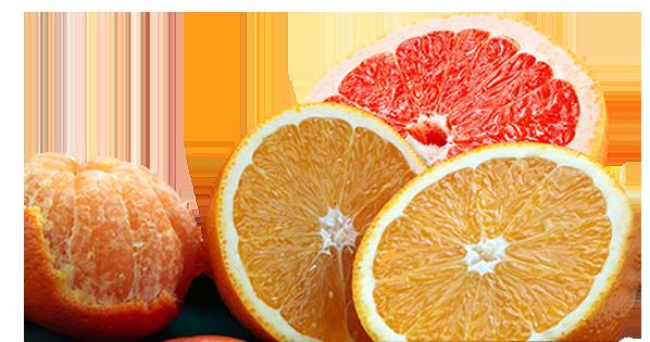 oranges-new
